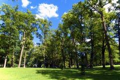 Park of Gatchina Stock Photography