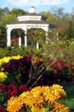 Park and Gazebo with Flowers. Flower bed in an ornamental park with gazebo in distance Stock Photography