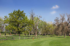 Park and golf course in Ada Ciganlija Royalty Free Stock Image