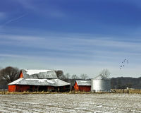 Park-Grafschaft-Stall stockfotos