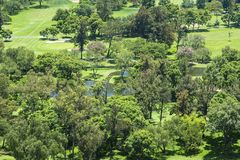Park with green areas. In Mexico royalty free stock photo