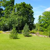 Park, green meadow and blue sky Royalty Free Stock Images