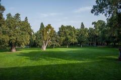 Park Grove Pekings Himmelstempel Lizenzfreies Stockbild