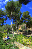Park Guell,Barcelona Royalty Free Stock Photos