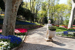 The Park of Gulhane, Istanbul Royalty Free Stock Photo