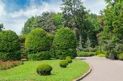 Park, Hecke, grüne Wiese und blauer Himmel Ein heller sonniger Tag lizenzfreies stockbild