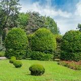 Park, Hecke, grüne Wiese und blauer Himmel Ein heller sonniger Tag lizenzfreie stockbilder