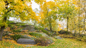 Park in Helsinki Finland Royalty Free Stock Images