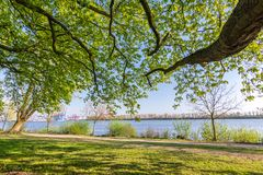 Park and hiking trail at the Elbe river in Hamburg, Germany. Park and hiking trail under green leaves at the Elbe river in Hamburg, Germany stock photos