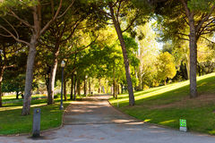 Park on hill Montjuic in Barcelona. Stock Photography