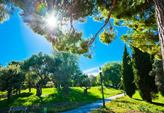 Park on hill Montjuic in Barcelona. Stock Images