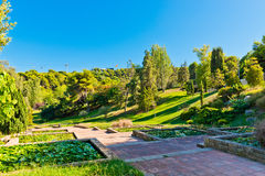 Park on hill Montjuic in Barcelona. Royalty Free Stock Photo