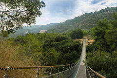 Park with Hinged bridge. Israel Royalty Free Stock Photo