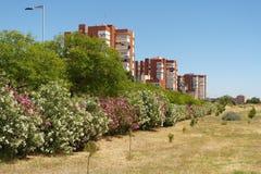 Park of Huelva Royalty Free Stock Photos