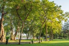 Park i droga Zdjęcia Royalty Free