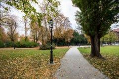 Park i fallen royaltyfria foton
