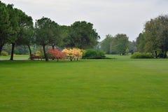 Park i fjäder Arkivfoton