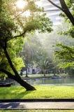 Park i stad Royaltyfri Foto