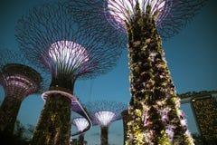 Singapore, gardens by the bay, Marina Bay sands royalty free stock photos