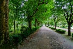 Park im Curia; Tamengos; Anadia; Portugal Stockbilder