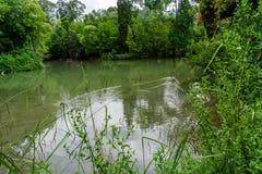 Park im Curia; Tamengos; Anadia; Portugal Lizenzfreie Stockfotos