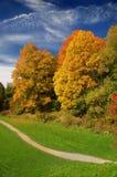 Park im Fall Stockbilder