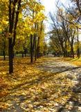 Park im Herbst Stockfoto