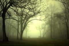 Park im Nebel Stockbild
