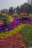 Park im Park Stockfotos