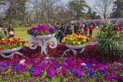Park im Park Stockfotografie