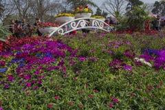 Park im Park Stockbilder