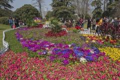 Park im Park Lizenzfreie Stockfotos
