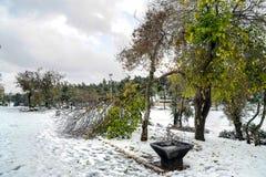 Park im Schnee Stockfotos
