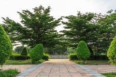 Park im Tempel von Thailand stockfotografie