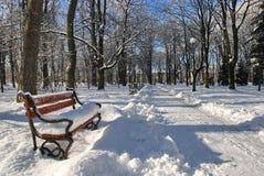 Park im Winter lizenzfreie stockfotografie