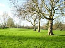 Free Park In Autumn Stock Photos - 2271563