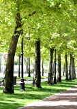 Park In Spring Royalty Free Stock Images
