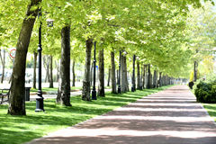 Free Park In Spring Royalty Free Stock Image - 40863586