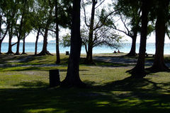 Park with Indian Ocean in the background. In Mauritius Royalty Free Stock Photos
