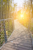 Park iron chain bridge in bamboo forest Royalty Free Stock Photo