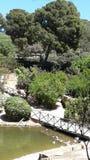 Park Italië eiland Sardinige Stock Fotografie