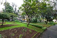 Park Jardim Municipal in Funchal, Madeira Royalty Free Stock Photography