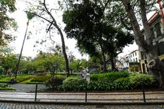 Park Jardim Municipal in Funchal, Madeira Royalty Free Stock Photo