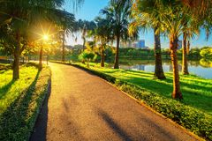 Through the park for jogging or rest. Go through the park for jogging or relaxing. In the morning there is sunshine stock image