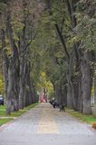 Park from Kaluga Russia Royalty Free Stock Image