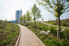 Park kamienie, Donetsk 2012 zdjęcie stock