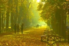 Park in Klausenburg-Napoca lizenzfreies stockbild