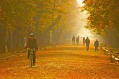 Park in Klausenburg-Napoca Lizenzfreie Stockbilder