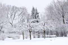 park krajobrazowa zimy. Zdjęcia Royalty Free