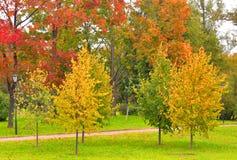 Park Kurakina Dacha early autumn. Stock Images